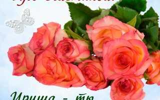Поздравить ирину с днём рождения