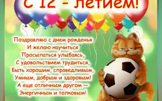 Поздравление с днём рождения 12 лет мальчику