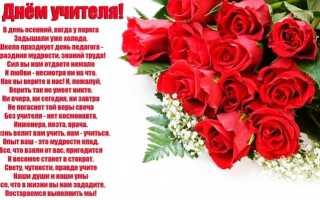 Красивые стихи на день учителя