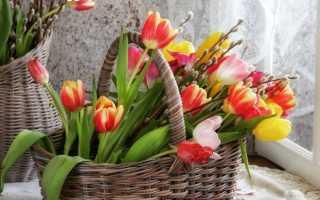 Пожелания доброго апрельского утра стихи про утро в апреле