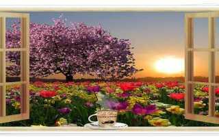 Пожелания девушке с добрым утром стихи для любимой