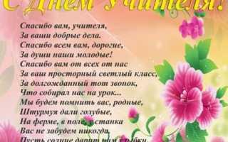 Прикольные стихи на день учителя