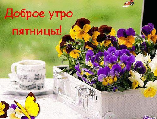 Пожелания доброго утра пятницы